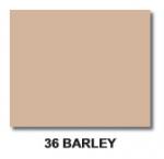 36 Barley